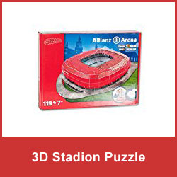 Stadion Puzzle